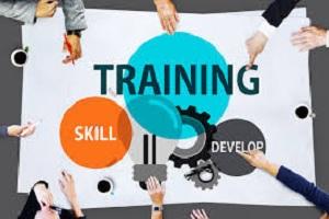 SEO skills building